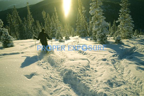cross, country, x, skiing, touring, Telemark, Steamboat Springs, Colorado, Rocky  Mountain, Ken Proper