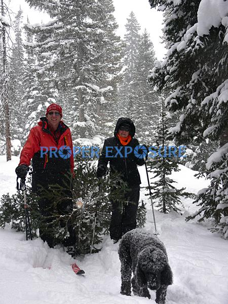 Nordic, family, skiing, dog, group, poodle, winter, snow, Routt, forest, Christmas, tree, Steamboat, Springs, Colorado, CO, Ken Proper