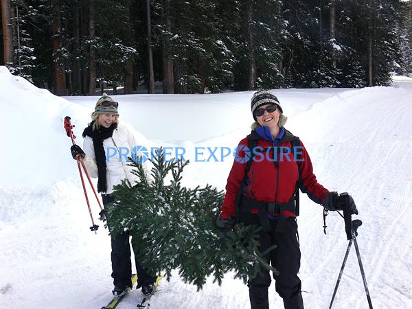 Nordic, family, skiing, group, winter, snow, Routt, forest, Christmas, tree, Steamboat, Springs, Colorado, CO, Ken Proper