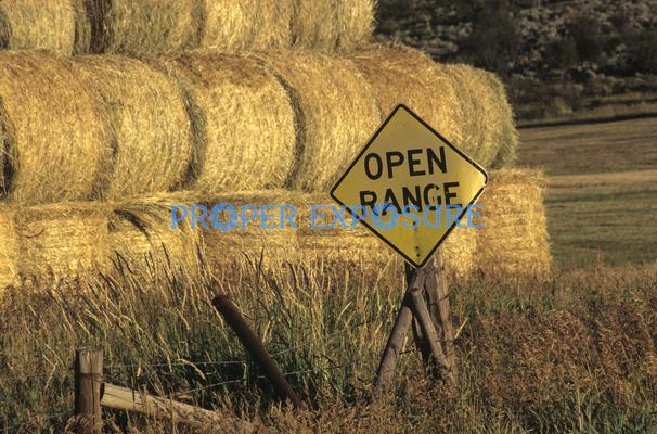 Haybales, ranching, open range, rolled hay, county road, Steamboat Springs, Colorado, Routt county