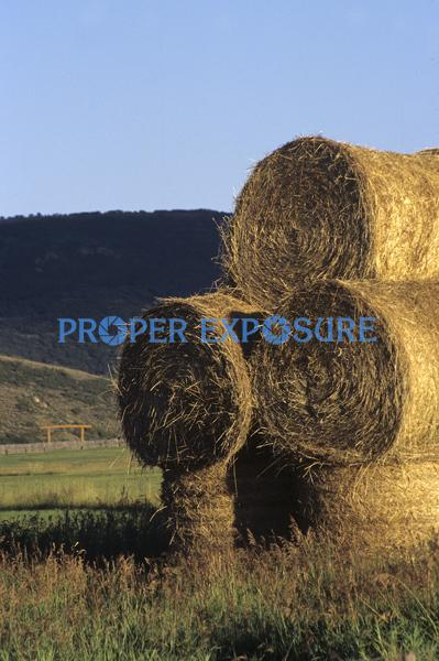 haybales, rolled hay, ranching, Steamboat Springs, Colorado, Routt, County, road