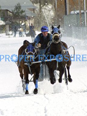 Steamboat Springs, Colorado, Downtown, Rocky Mountains, winter, Carnival, Chariot, Race, horses