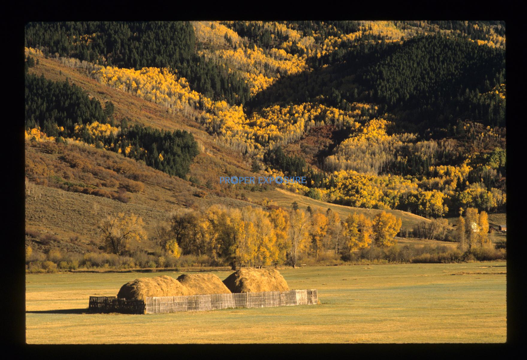 Hay field, Pleasant Valley, Steamboat Springs, Colorado, Rocky  Mountain, Ken Proper, fall colors