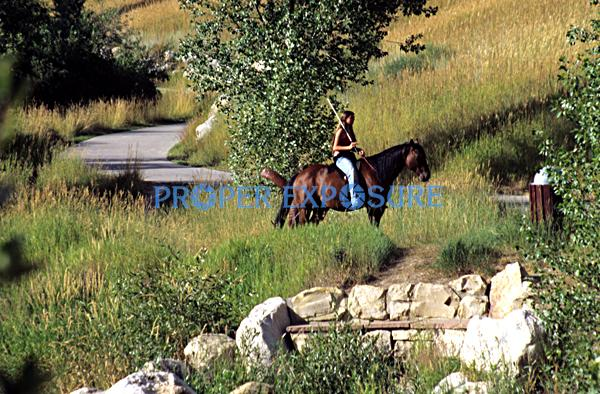 Horse, rider, core trail, downtown, Steamboat Springs, Colorado, Rocky  Mountain, Ken Proper
