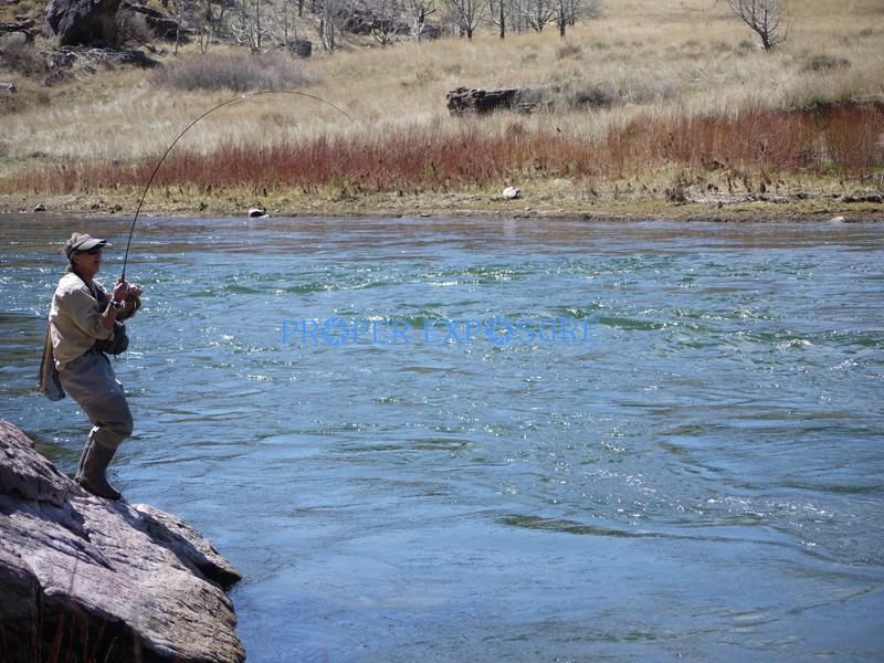 Green River, Utah, Little Hole, fly fishing, trout, angler