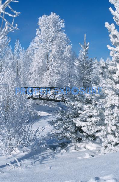 bridge, core, trail, winter, snow, Steamboat Springs, Colorado, Rocky  Mountain, Ken Proper
