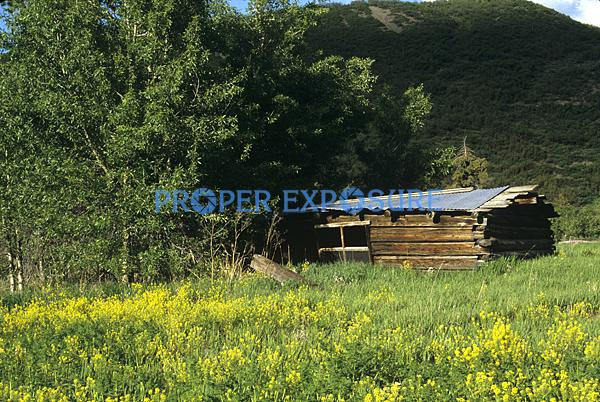 Ken Proper, Proper Exposure, Steamboat Springs, Colorado, Routt County, Rocky Mountains, log cabin, wildflowers, pioneer